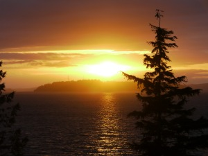 Sunset at Telegraph Cove - Kathryn